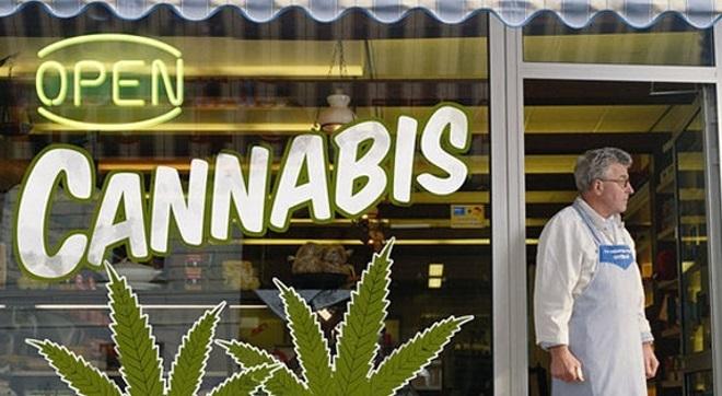 L'ONU apporte de l'eau au moulin des défenseurs de la légalisation du cannabis