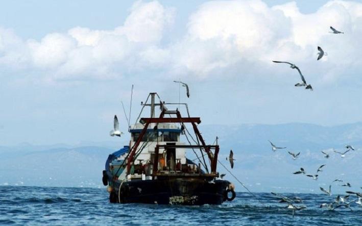 La flotte de pêche espagnole empêchée d'opérer au Maroc faute de licences