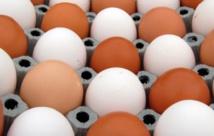 L'œuf dans tous ses états