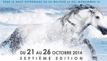 Le Salon du cheval da'El Jadida, un évènement aux multiples dimensions