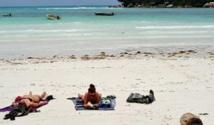 Aux Seychelles, la plume verte  qui met les autorités en émoi