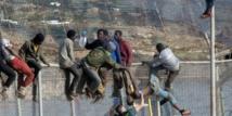 Recrudescence des assauts d'immigrés clandestins à Mellilia