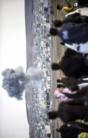 Les frappes de la coalition ont tué plus de 500 jihadistes en Syrie