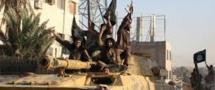 L'Etat islamique tue 30 combattants de l'armée syrienne