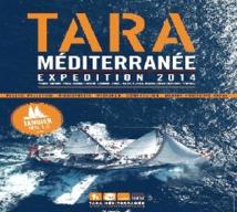 Escale tangéroise pour la goélette d'exploration Tara