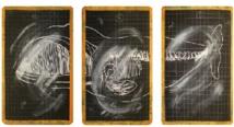 """""""La force animale"""", exposée à la galerie Venise Cadre"""