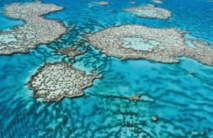 Le plan australien ne sauvera pas la Grande barrière de corail