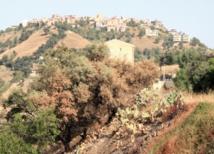 Le prix Green Apple Award Trophy décerné  à une revue environnementale marocaine