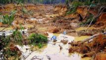 La ruée vers l'or provoque une catastrophe écologique dans l'Amazonie péruvienne