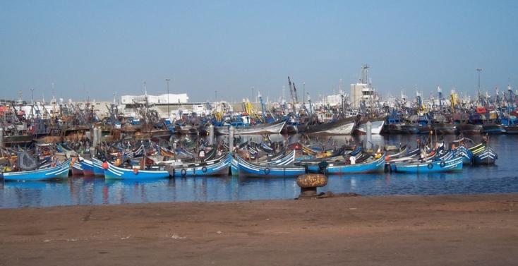 44 hauturiers bravent l'interdiction de pêche édictée par le département d'Akhennouch