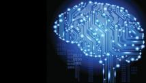 Insolite : Intelligence artificielle