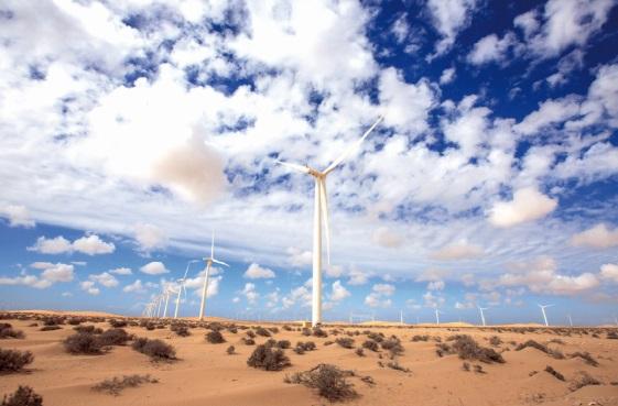Du rififi autour du parc éolien de Tarfaya