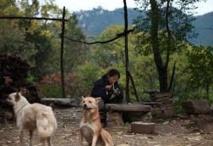 Au pays des foules, le temps revenu des ermites en Chine