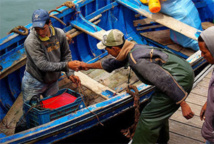 Les professionnels de la pêche côtière mécontents