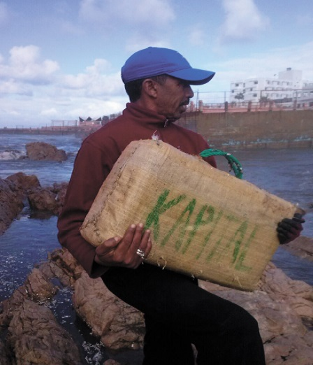 La plage d'Aïn Diab rejette une cargaison de chira