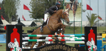 Equitation infos