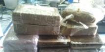 Près de 24 tonnes de résine de cannabis saisies