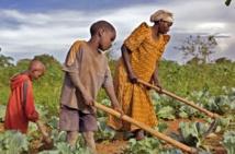 Reconnaître les droits de propriété des pauvres dans les pays en développement