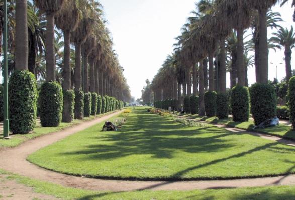 Casablanca manque toujours d'espaces verts