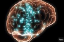L'élaboration d'une stratégie pour être récompensé repérée dans le cerveau
