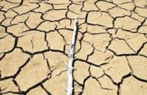 Ouverture à Rabat d'une Conférence nationale sur les changements climatiques