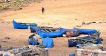 Saisie de plusieurs dizaines de tonnes de corbines pêchées illicitement