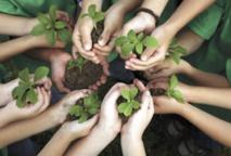 Des volontaires marocains au service de l'éducation et du développement durable