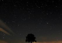 Des quadruplés en gestation du côté des étoiles