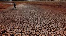 Le réchauffement rend incertaine la sécurité alimentaire mondiale dans les prochaines décennies