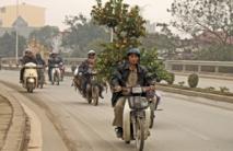 Au Vietnam, même les kumquats du Nouvel An sont victimes des pesticides