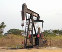 Le pétrole angolais est-il une panacée ?