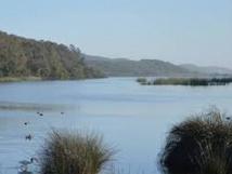 La richesse floristique des zones humides estimée à plus de 670 espèces et sous-espèces