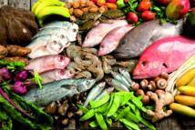 Faibles échanges commerciaux des produits halieutiques entre le Maroc et l'Afrique