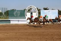 Le cheval Striving remporte le titre
