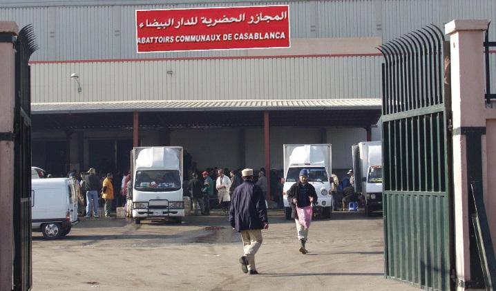 La Cour des comptes dénombre les multiples tares de la gestion des abattoirs casablancais