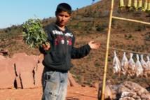 Accès à des services publics de qualité  en milieux rural et défavorisé