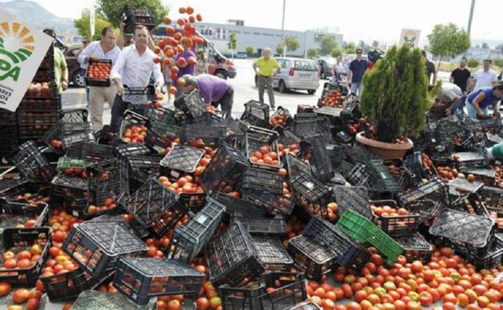 Le lobby espagnol poursuit sa croisade contre les tomates marocaines