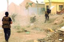 Daesh entre conquête et revers sanglants