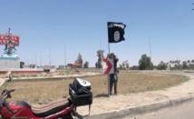 L'Irak réagit à la prise de Ramadi par Daesh