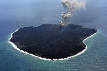 Une île volcanique au Japon révèle un laboratoire naturel du vivant