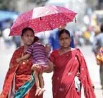 Une vague de chaleur tue plus de 1.100  personnes en Inde