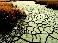 L'OMS appelle à placer la santé au cœur de la lutte contre les changements climatiques