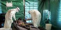 La souche du virus Ebola en Afrique de l'Ouest moins virulente que celle de 1976