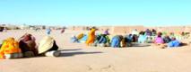 Les camps de Tindouf.