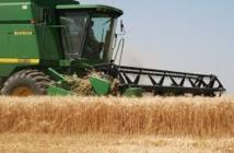Hausse de la production agricole et baisse des prix
