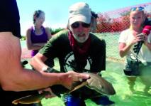 Nager avec des requins aux Bahamas