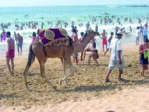 Une fois de plus les plages de Mohammedia ratent le coche