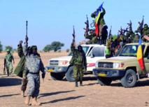 Vaste opération de l'armée tchadienne contre Boko Haram