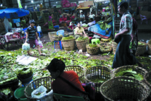Les chiques de bétel, bombe  sanitaire à retardement en Birmanie