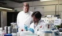 Une étude offre l'espoir d'un dépistage précoce du cancer du pancréas